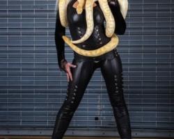 Schlangen Show